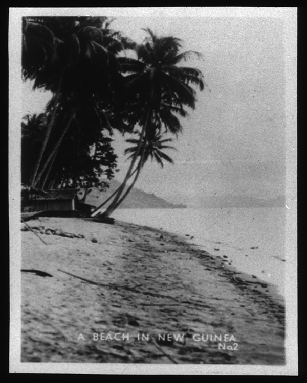New Guinea beach